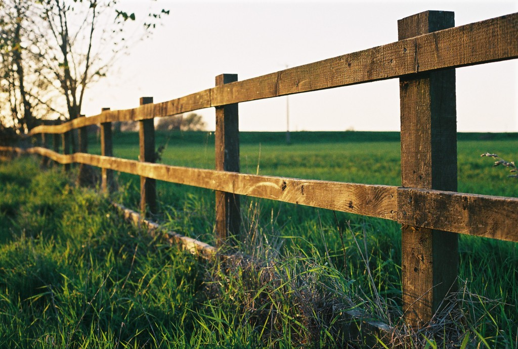Farm_fence_in_Watlington